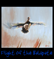 Flight of the Baldpate - 24 X 30 Acrylic on Stretched Canvas with Gallery Wrap Blue Border