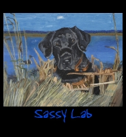 Sassy Lab - 24x30 Acrylic on Stretched Canvas with Image Wrap Border - Painting by Greg Schwab
