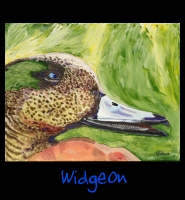 Widgeon - 22x28 Acrylic on Stretched Canvas with Green Gallery Wrap Border - Painting by Greg Schwab