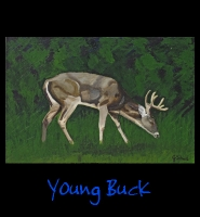 Young Buck - 24x36 Acrylic on Stretched Canvas with Black Gallery Wrap Border - Painting by Greg Schwab