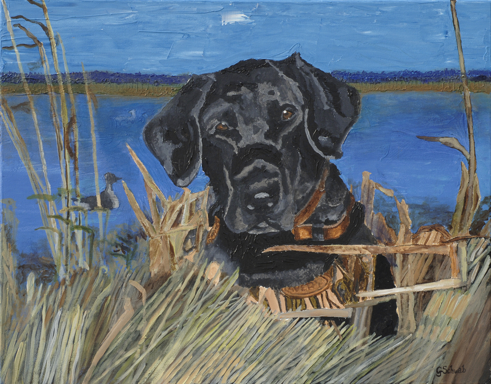 Sassy Lab - 24x30 Acrylic on Stretched Canvas with Image Wrap Border